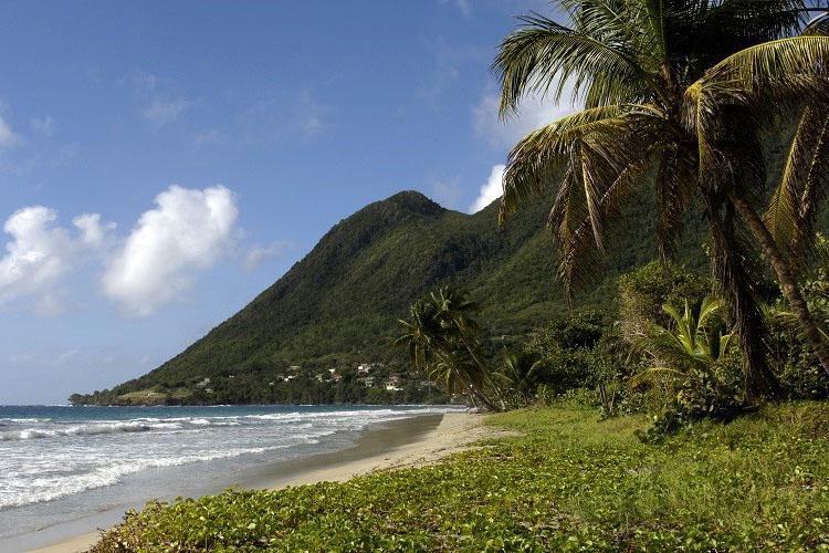 Une multitude de choix pour votre randonnée en Martinique